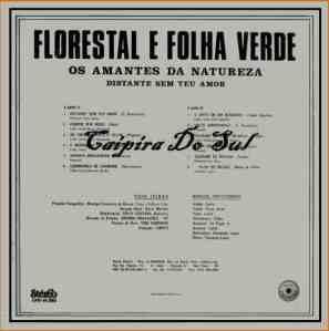 Verso-Florestal E Folha Verde